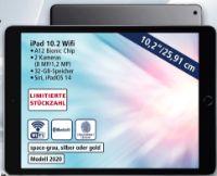 iPad 10.2 von Apple