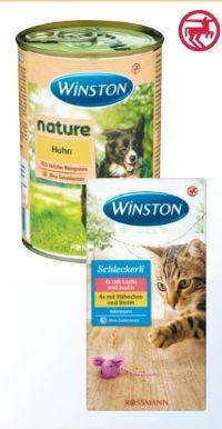 Nature Hund von Winston