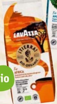 Bio-Kaffee Tierra Organic von Lavazza