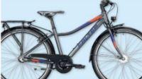 ATB FX 6073ND Deep Diamant von Falter-Bikes