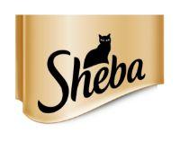 Sheba Angebote