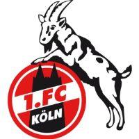 1. FC Köln Angebote & Aktionen
